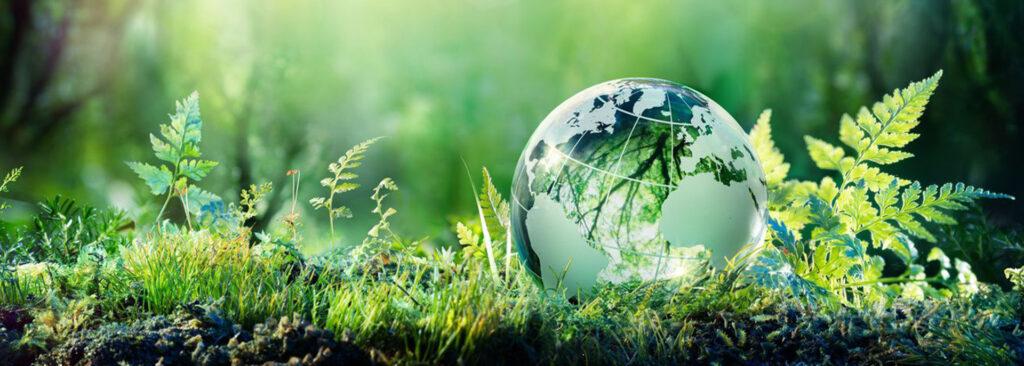 Security & Sustainability Forum